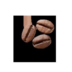 Grains de café LA PATELIERE
