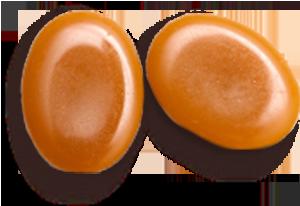 Caramel La Patelière