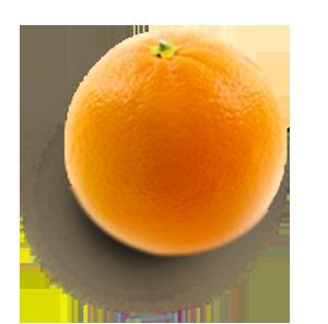 Orange fruit LA PATELIERE
