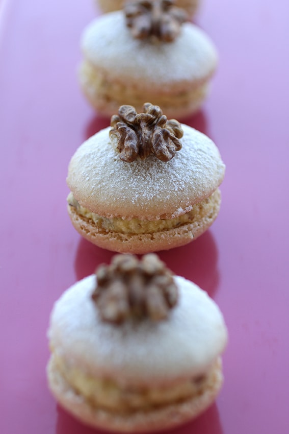 Macarons succès aux noix recette LA PATELIERE